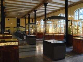 Музей естественной истории  в Дюссельдорфе