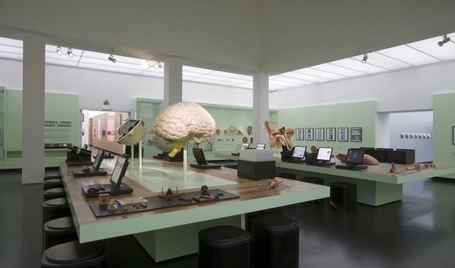 Дрезденский музей здравоохранения или Музей гигиены (Deutsches Hygiene-Museum)