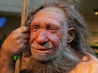 Интересное в Дюссельдорфе: Неандерталь — музей истории и эволюции человечества