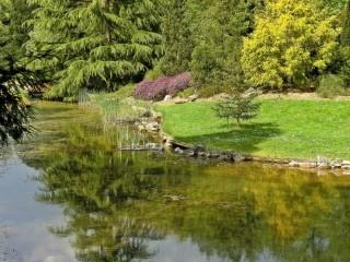 Ботанический сад в Дюссельдорфе