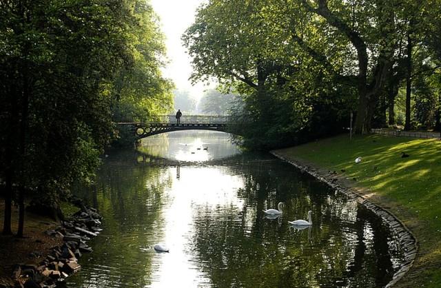 Парк Хофгартен (Hofgarten)