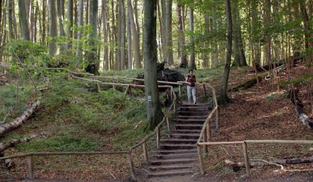 Национальный парк Ясмунд (Nationalpark Jasmund)