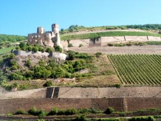 Руины замка Эренфельз