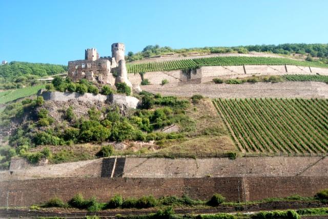 Развалины крепости Эренфельз (Burg Ehrenfels)