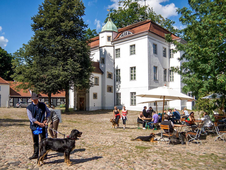 Охотничий дворец Груневальд