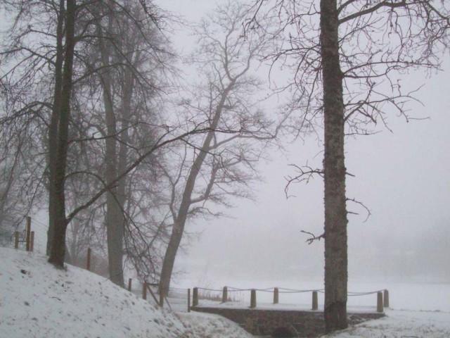 Ах, туман туман...
