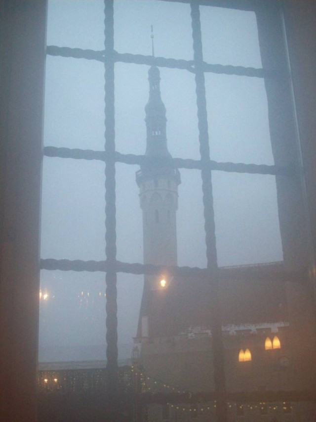 Из окна открывается вид на ратушу.