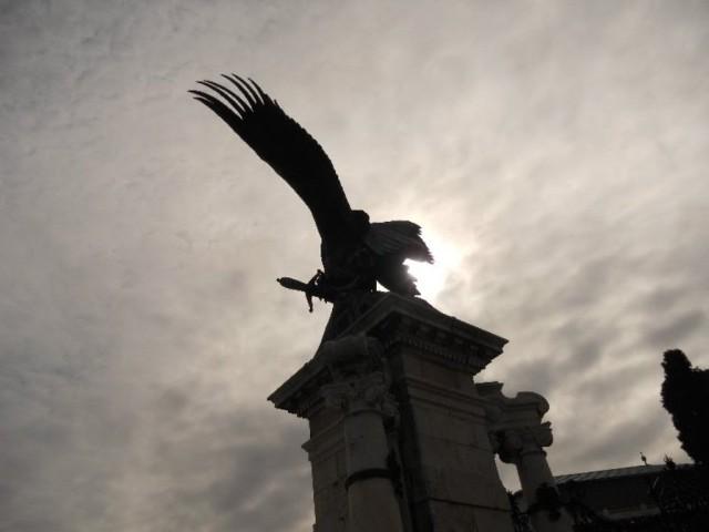 Орел, который привел венгров в Венгрию