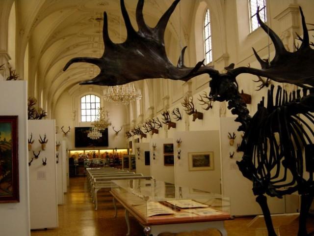 Немецкий музей охоты и рыболовства (Deutsches Jagd- und Fischereimuseum)