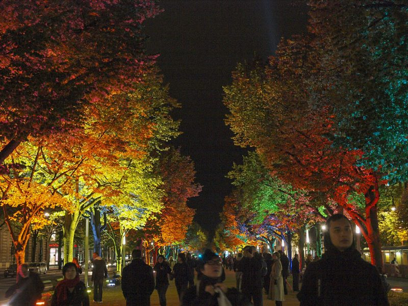Бульвар в ночной подсветке