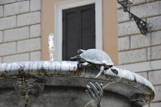 Фонтан Черепах (Fontana della Tartarughe)