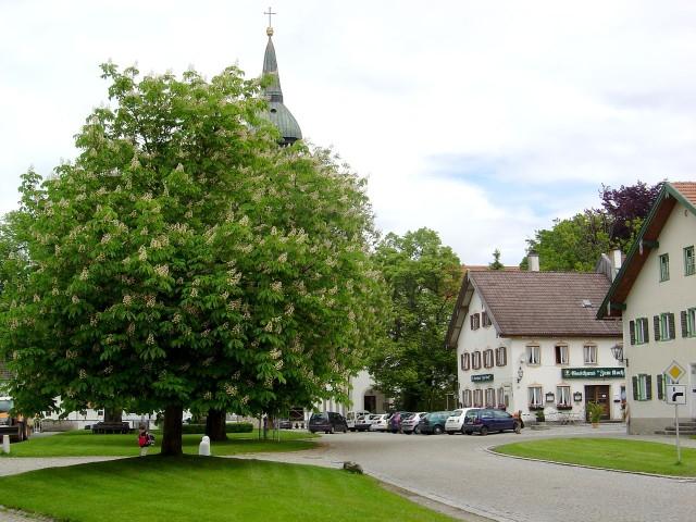 Роттенбух (Rottenbuch)