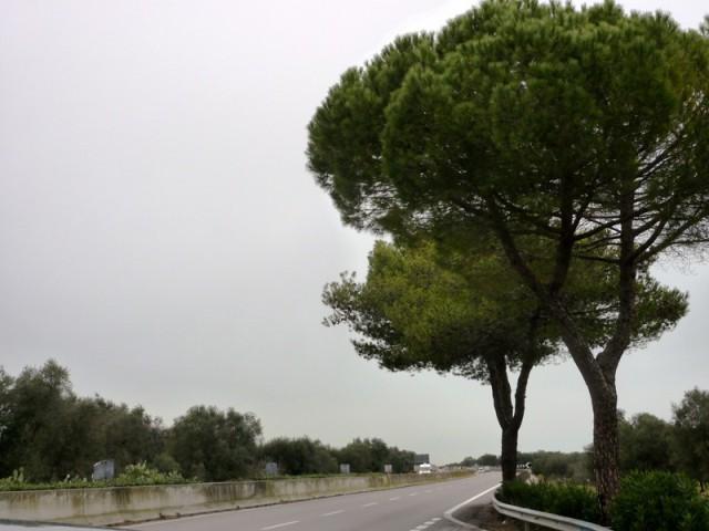 Way to Brindisi