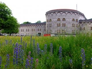 Ульмская крепость