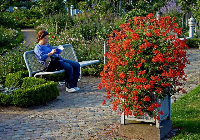 Парк «Плантен ун бломен» (Planten un Blomen)