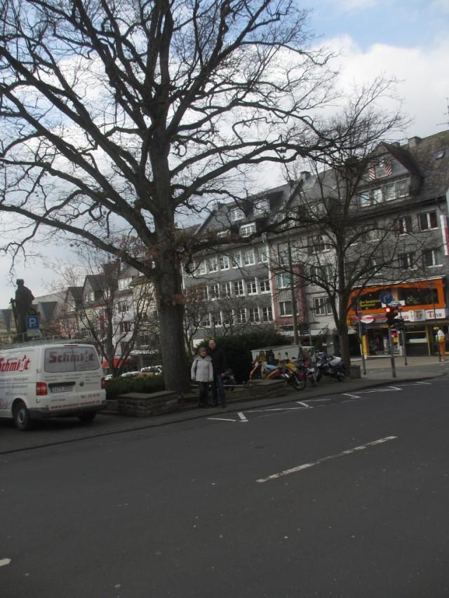 Дерево, посаженное Бисмарком