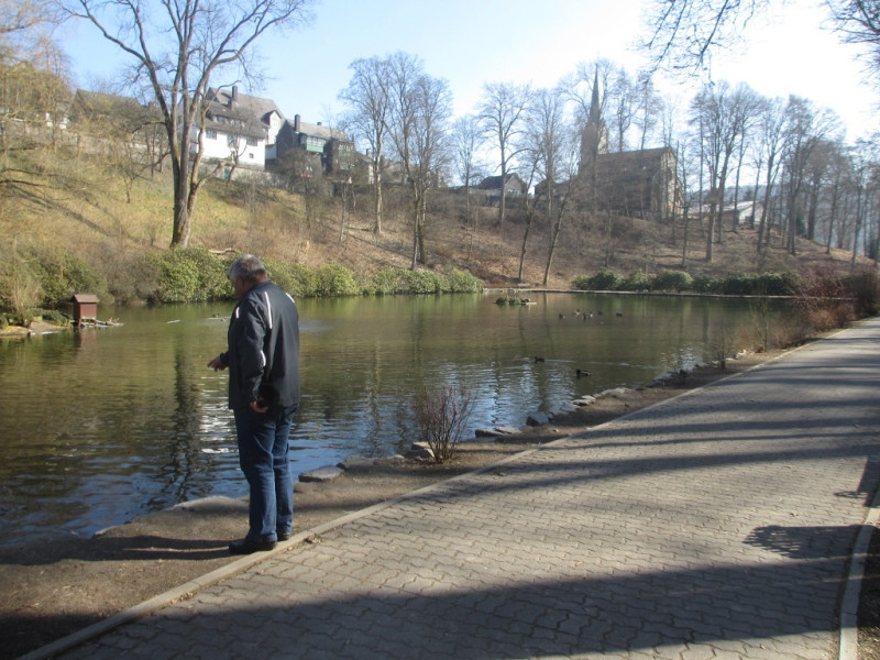 Пруд в замковом парке