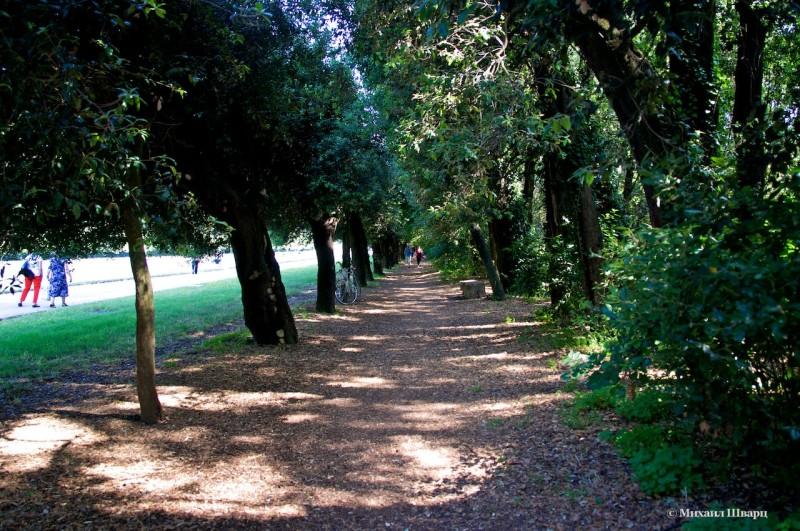 Аллея для бега и прогулок
