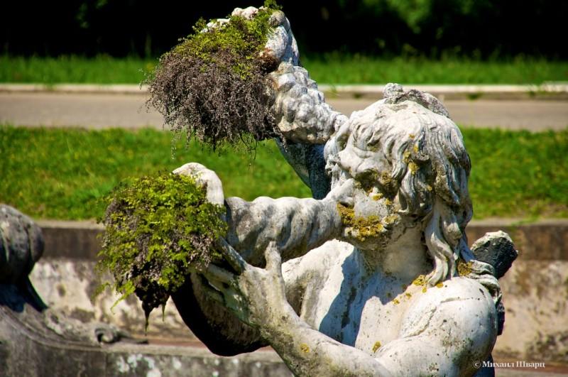 Скульптуры едят морскую капусту