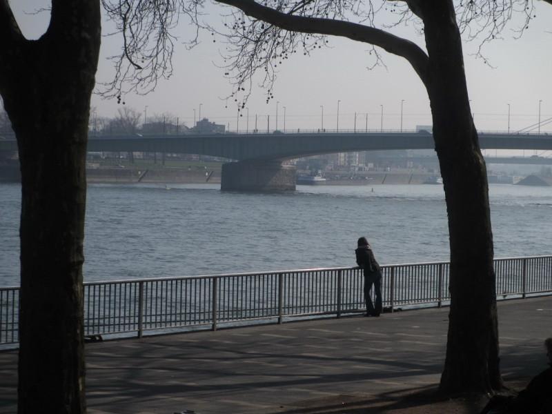Набережная Рейна в Кельне