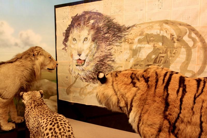 Зоологический музей в Риме (Museo Civico di Zoologia)