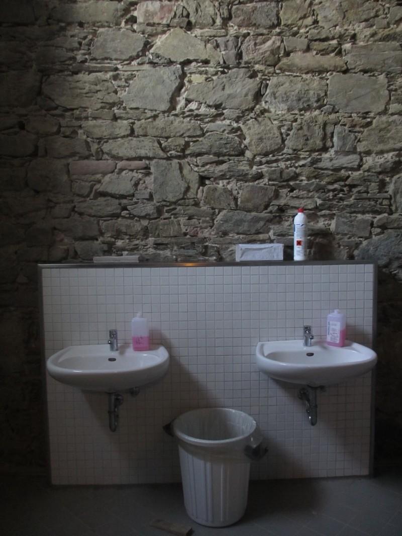 Современная сантехника в интерьере XIX века