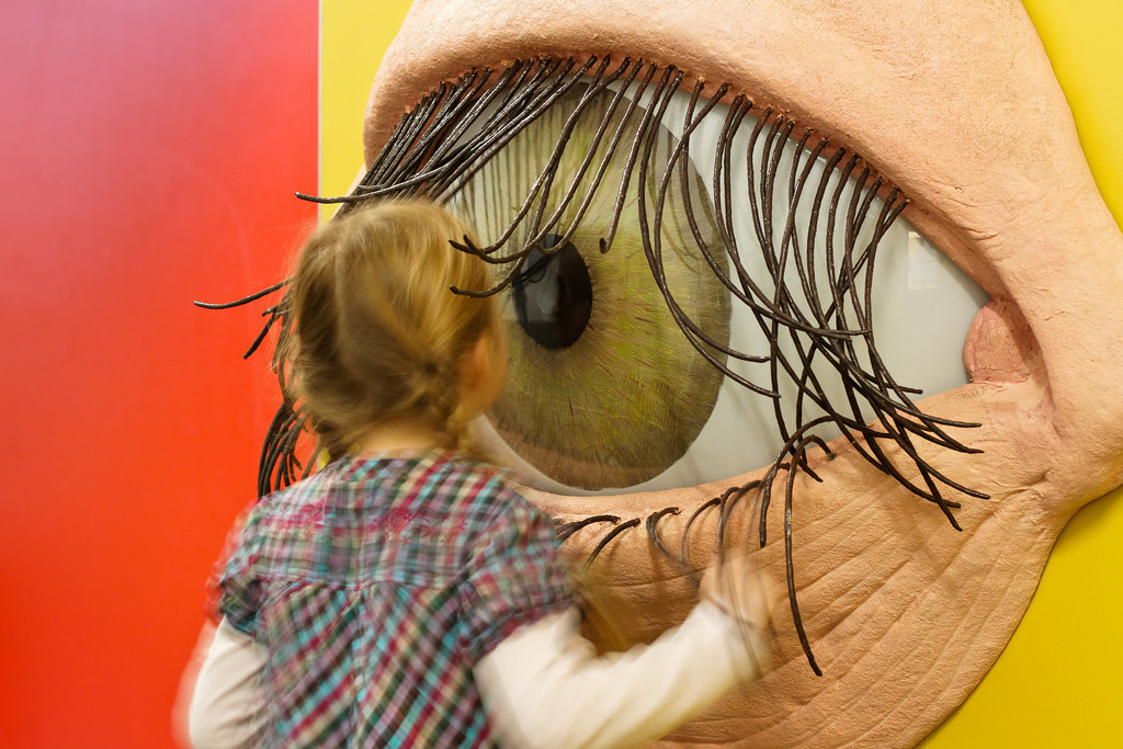 Что же это такое - глаз?