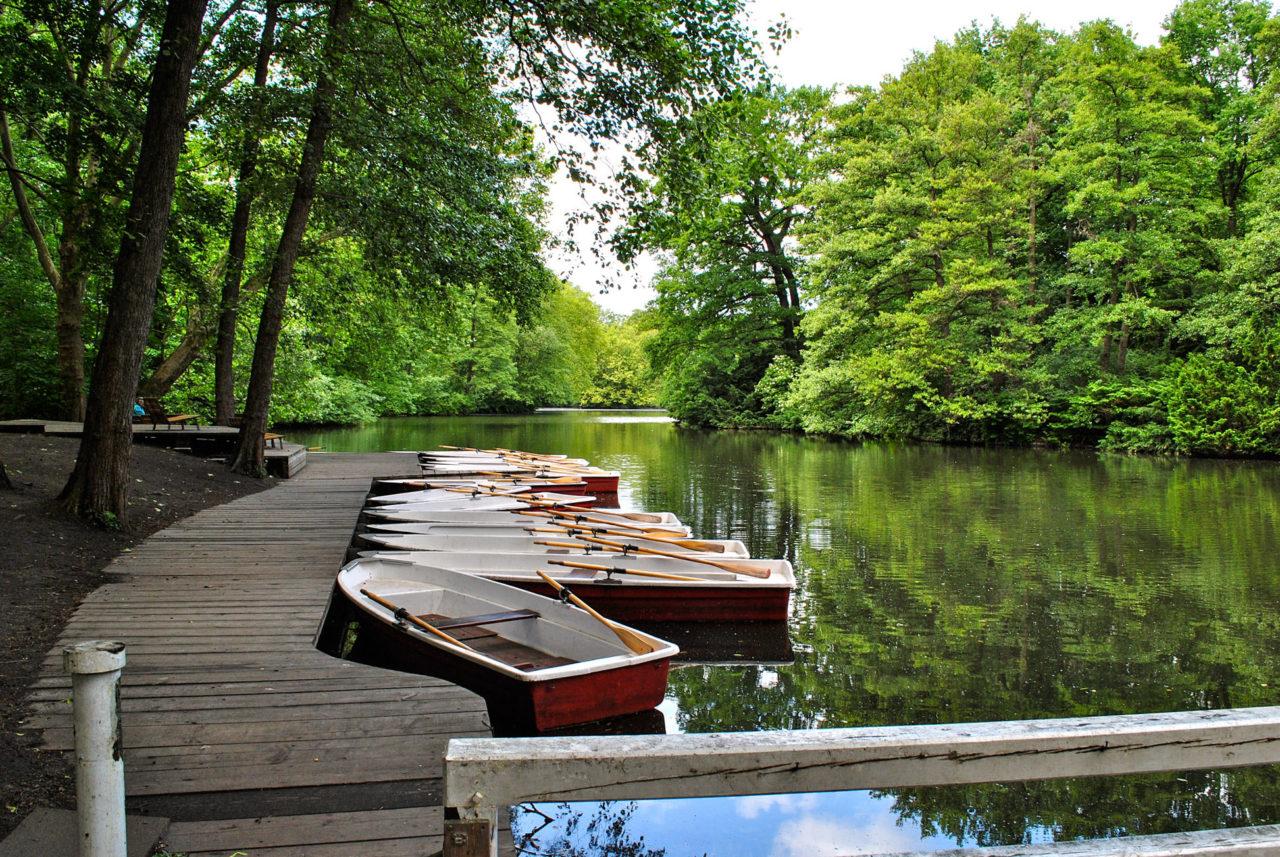 В парке можно покататься на лодке