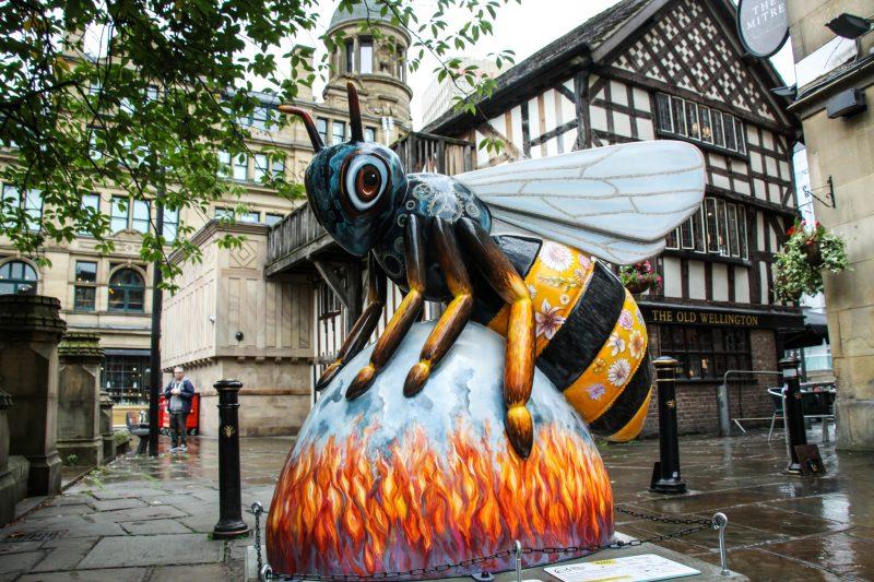 Манчестер. Пчела. Великобритания